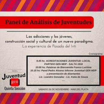 PANEL DE ANALISIS DE JUVENTUDES
